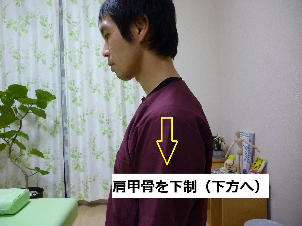 肩甲骨の下制